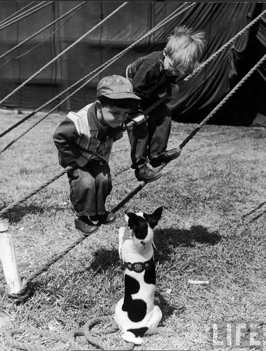 honey-kennedy-ringling-bros-circus-little-boys-and-dog-sarasota-march-1949-by-Nina-Leen