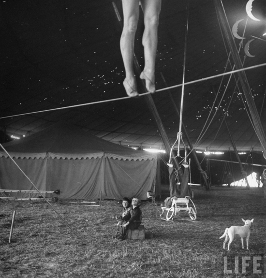 honey-kennedy-ringling-bros-circus-tightrope-sarasota-march-1949-by-Nina-Leen
