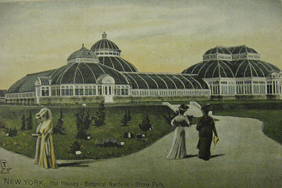 honey-kennedy-vintage-bronx-botanical-garden-postcard