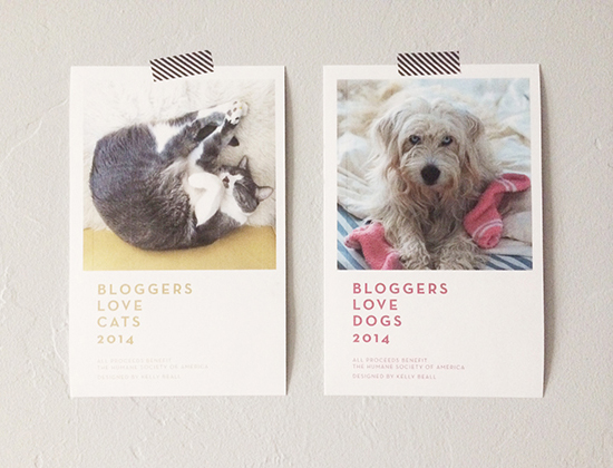 honey-kennedy-bloggers-love-cats-and-dogs-calendars-fundraiser-01