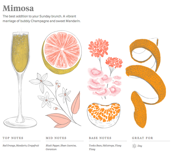 honey-kennedy-commodity-goods-perfume-mimosa
