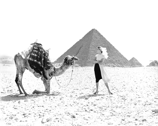 honey-kennedy-dovima-at-the-pyramids-by-richard-avedon-02