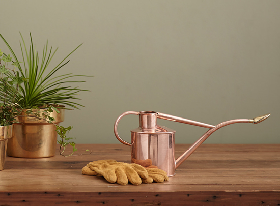 honey-kennedy-haws-copper-watering-can-plants-09