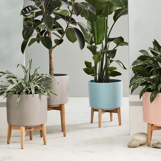 honey-kennedy-west-elm-turned-leg-standing-planters-11
