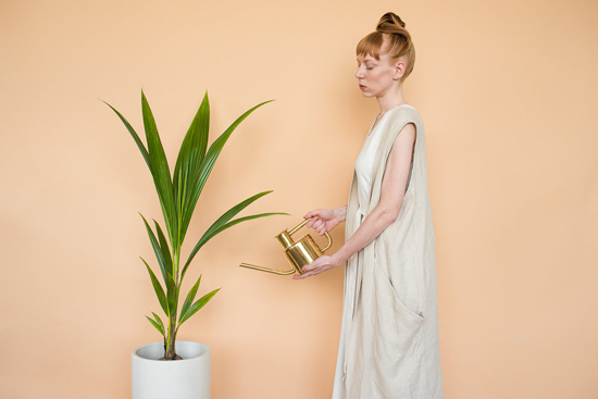 honey-kennedy-fern-shop-plant-lookbook-06