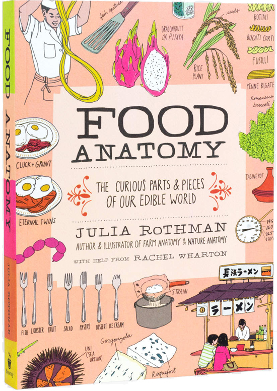 honey-kennedy-food-anatomy-rothman-book