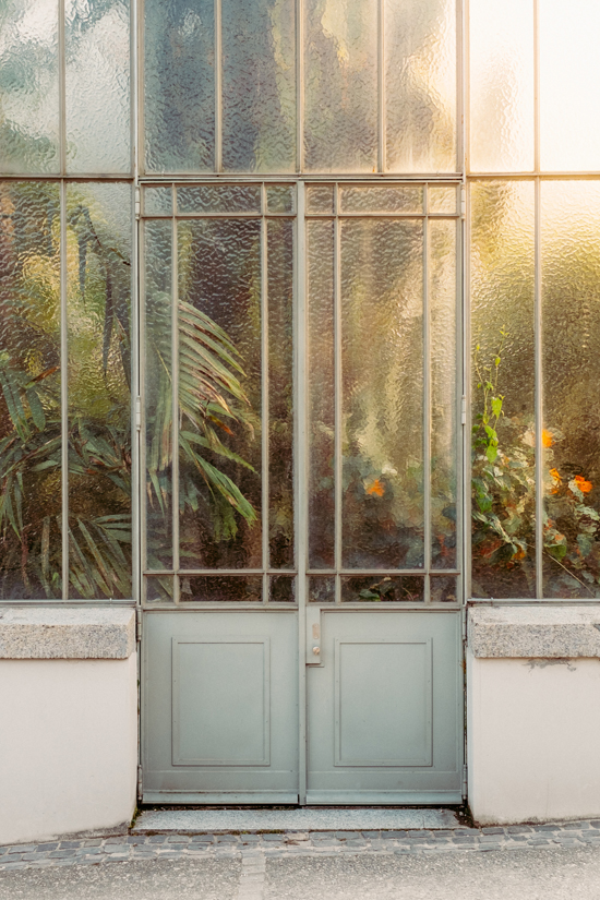 honey-kennedy-gardenista-plants-veiled-by-dappled-glass-at-geneva-botanical-garden-photograph-samuel-zeller-23
