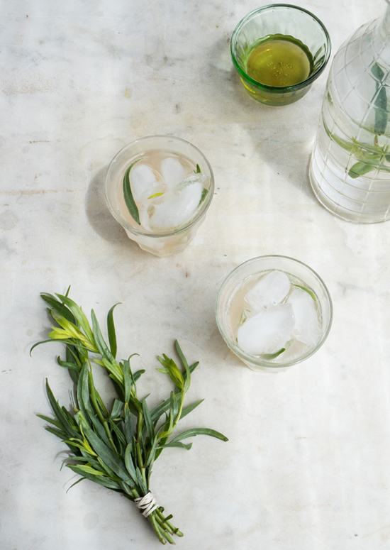 honey-kennedy-summer-drinks-17-101-homemade-tarragon-soda